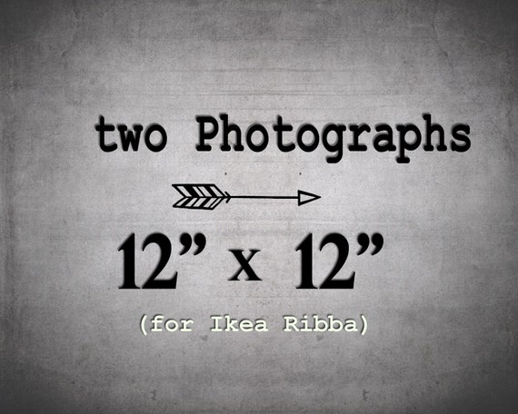 Create a print set of 2 12x12 Photographs for the large IKEA Ribba