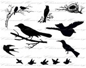 SALE!!!Bird Silhouettes Digital Collage Sheet (4) - INSTANT Download - Printable Images -  - Digital Download