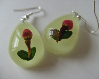 Rose, drop, glow in the dark, resin, real rose, dried flower, earrings, by NewellsJewels on etsy