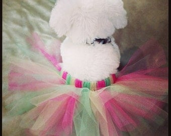 Hot Pink Fushia, Lime Green, and Yellow Spring Dog Tutu with Adjustable Velcro Waist