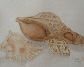 Oiginal Watercolor of Shells Matted Beach Decor Cottage Decor