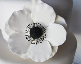 sugar anemone white set of 4