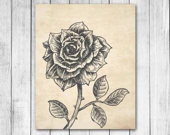 Vintage Parchment Rose Flower Pencil Drawing Floral Illustration Reproduction Digital Art Print