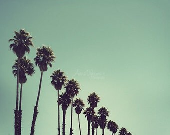 Turquoise Beach Photography - Santa Cruz - Fine Art Photography - sky, palm trees, teal, aqua, turquoise, nature, modern, minimal
