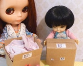 Miniature Dollhouse Mail Package Set 1:6 scale BJD doll