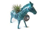 Live air plant in Zebra planter with I love you message.