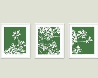 Maple Tree Branches Art Prints - Set of 3 - Wall Art - Forest Emerald Green - Modern tree Art - Woodland Home Decor - Autumn Leaf