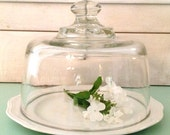 Vintage Glass Cloche And Ironstone Plate