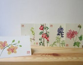 Sale! buy 4 get 1 free, Set of five watercolor greeting cards, Pink Geranium, Blue Lupine, green Grapevine, wild Rose and Yellow Orchid card