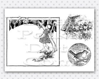 Vintage Nature Clip Art Border Birds Border Graphics Collage Sheet Printable Digital Instant Download Scrapbooking