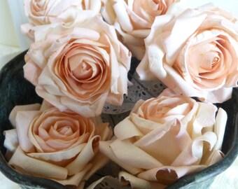 6 Large Light Peach Parchment Paper Roses