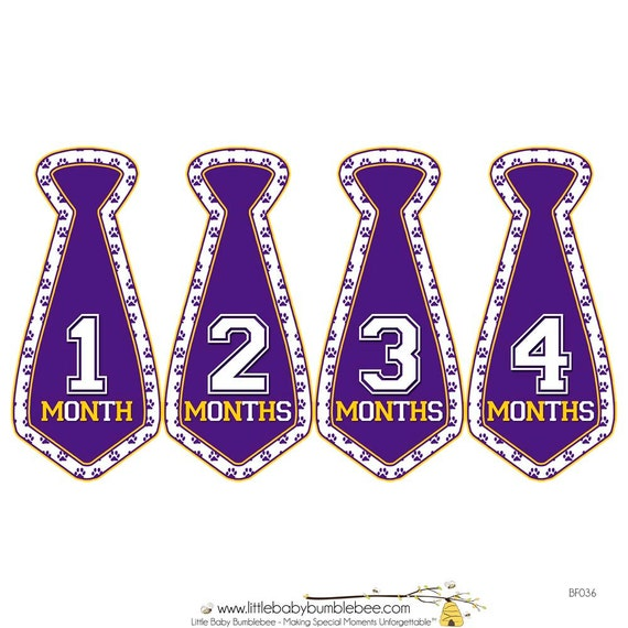 Monthly Boy Tie Stickers, Baby Announcement, Monthly Baby Stickers, Monthly Photos, Baby Gift, First Year Photo Prop, Gold Purple (BF036)