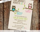 Gender reveal invitation owl baby shower invitation owl first birthday baby sprinkle diaper shower bash (item 1433) shabby chic invitations
