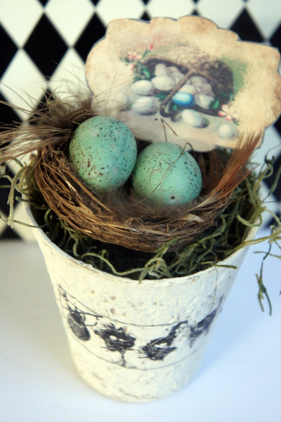 Nest with Eggs in Whitewashed Peat Pot