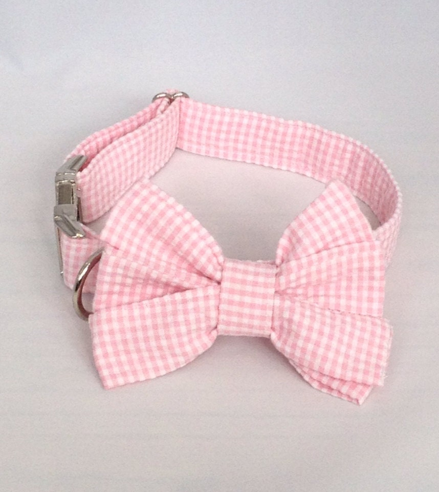 Dog Collar Bow Girl