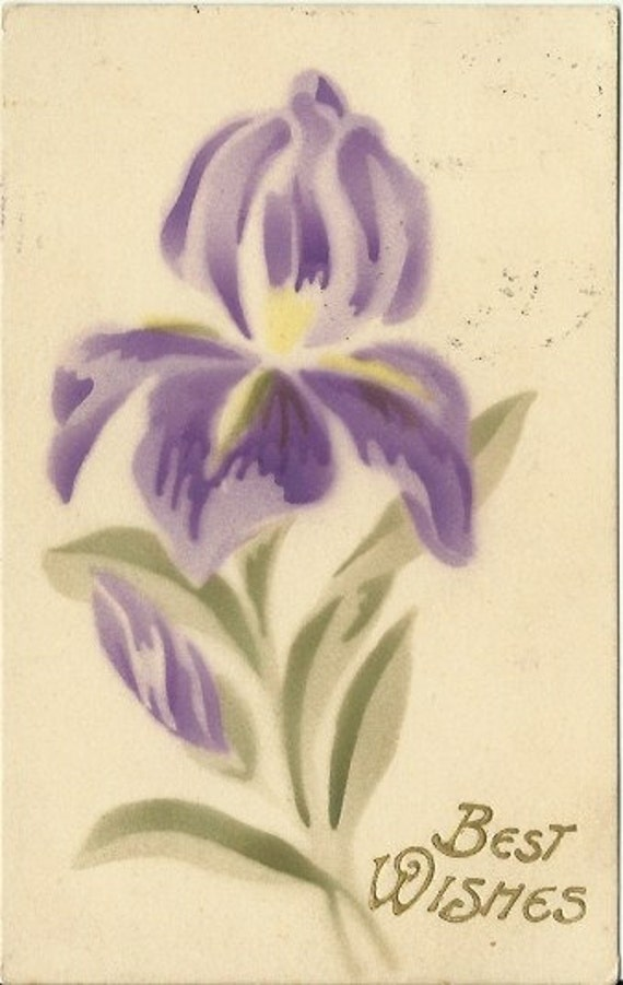 "Antique Postcard Purple Iris Stenciled Brushed Art ""Best Wished"" Greeting Card 1910"