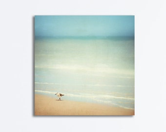 "Beach Canvas Photography, sandpiper blue beige white canvas gallery wrap coastal ocean nautical wrapped canvas print, ""Get Your Feet Wet"""
