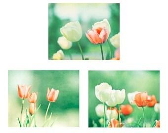 Flower Print Set, green orange peach mint tulip coral photography floral photos white nature photographs colorful wall art botanical set