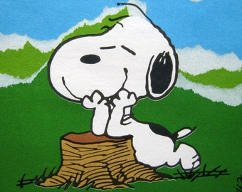 six unused SNOOPY note cards hallmark in box shultz peanuts woodstock , snoopy as nature boy