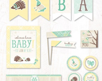 Winter Baby Shower - Instant Download PRINTABLE Party Kit (Mint)