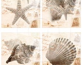 Vintage seashell digital collage sheet 4x4 inch tiles instant download and printable for scrapbooking, coasters and more...