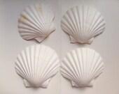 Scallop shells - large seashells, shell for candles, serving dish, mermaid shells, beach decor, beach wedding, nautical wedding, set of 2