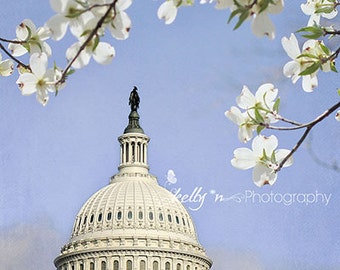 Capitol Photograph- Washington DC Photography, US Capitol Building Print, White Blue Decor, Travel Photography, Spring Flowers, USA Art
