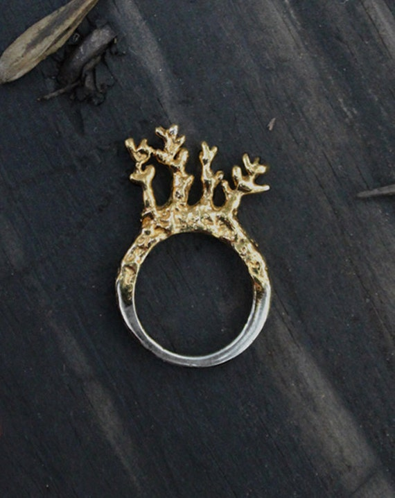 Twigs in a ring - Sterling silver ring with 24K gold plated - Tipuana Tipu 3 / RS-1103