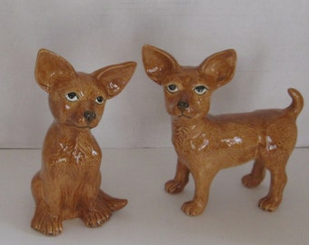 Pair of Chihuahua Dogs
