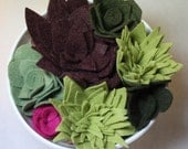Felt Succulents Set of Seven