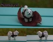 Micro Samoyed