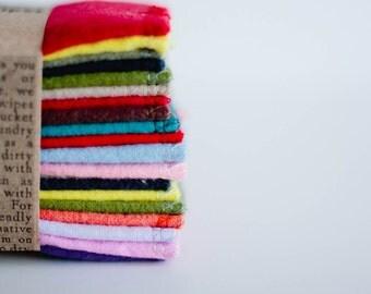 Family Cloth Wipes Diaper Bag Wipes - Unpaper  Napkins - Set of 20 - Gender Neutral
