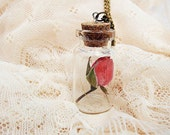 Elegant Dried Rose in a Bottle Necklace: Beauty and the Beast