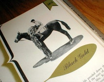 The Kentucky Derby *Diamond Jubilee* 1875 To 1949 *Complimentary Book For Boxholders*
