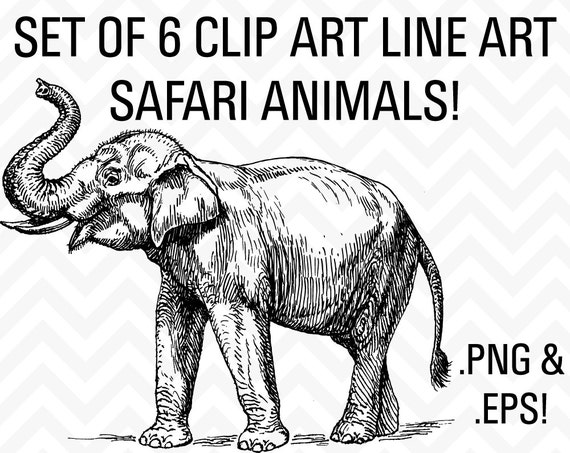 Line Art Jungle Animals : Off sale clipart safari jungle animals by sonyadehartdesign