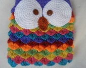 Crocheted Rainbow Crocodile Stitch Owl Purse Fully Lined and Magnetic Closure