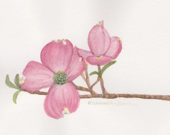 Pink Dogwood 1 5 x 7  Original Watercolor