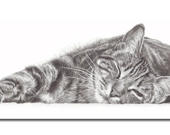 Set of 5 Greetings Cards. Cat drawing, Gift for Cat Lovers.
