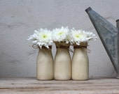 Shabby Chic  Vase Set, Rustic Home, Fall Wedding Centerpiece Decor, Hostess Gift