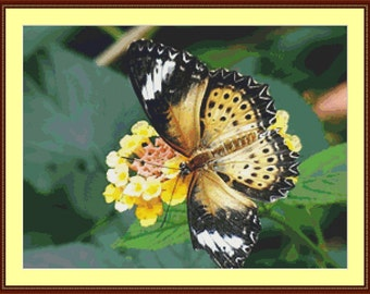 Exotic Butterfly Cross Stitch Pattern