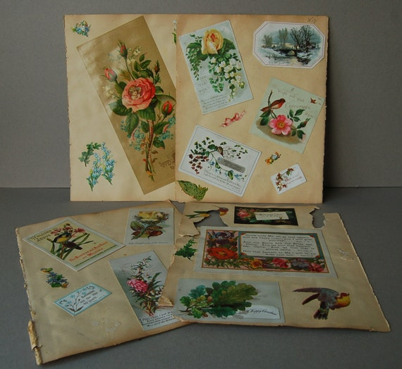 Victorian scrapbook pages Flowers birds cards religious cards Victorian christmas cards