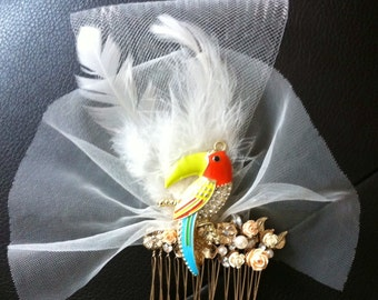 Toucan fascinator with feathers