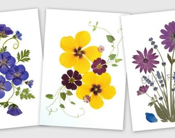 Pressed Flower Cards - set of 6 notecards - Made in Vermont