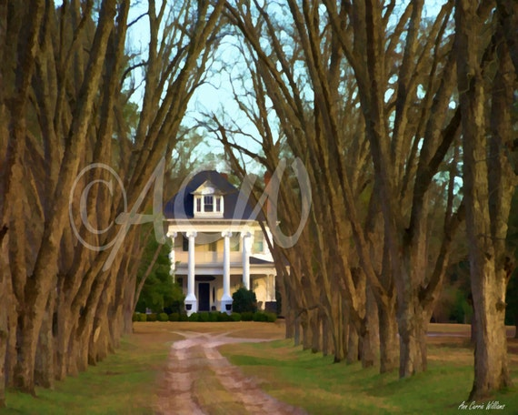 Plantation House in South Carolina (16 x 20 canvas)