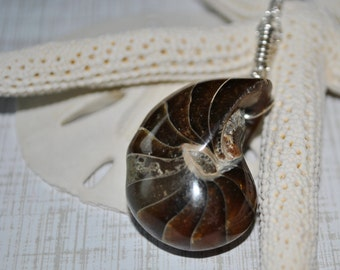 Brown Nautilus Fossil pendant necklace on sterling silver chain simple, boho, minimalist