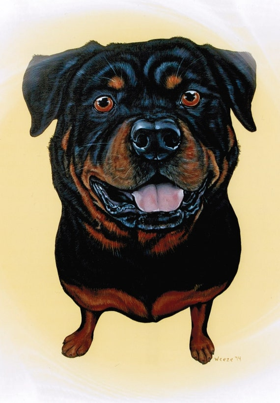 Rottweiler Rottweiler Art Rottweiler Print By Artbyweeze