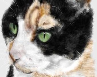 Custom Cat Portrait, pet portrait, custom pet portrait, cat lover, cat art, pet memorial, cat memorial, artwork, wall art, art print, gift
