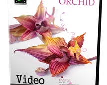 Video tutorial on how to make SILK ORCHID using japanese flower making tools