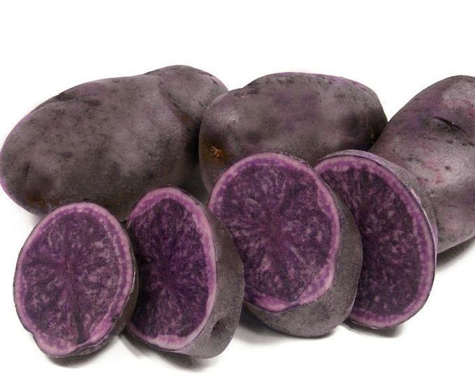 All Blue Seed Potatoes Certified Organic Virus Free 15 Lbs. Seed Potato Purple Potatoes Spring Shipping Non-GMO