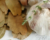 Garlic And Bay Leaves. A Macro Raw Food Photography And Kitchen Decor. A Fine Art Print In Natural And Mute Colors.